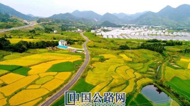 产业致富路——安远县山下至走马岗村道示范路.jpg