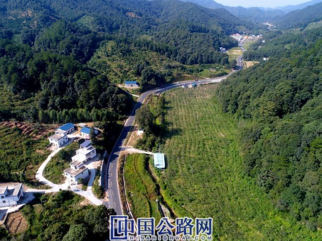 产业致富路——安远县高云山乡生态葡萄园.jpg