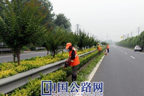 靖江公路站做好夏季干线植被管护 - 副本.JPG